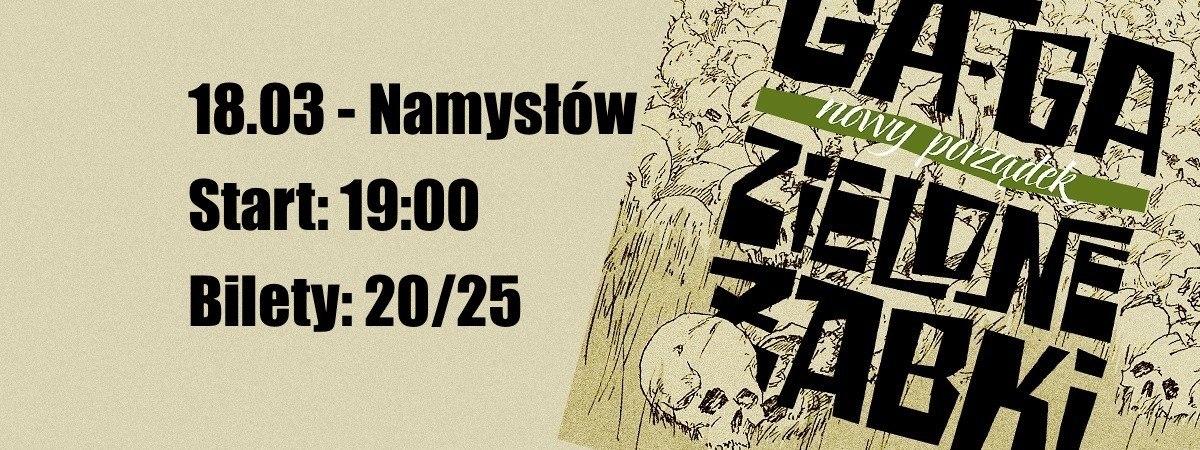 Koncert punkowy w Namysłowie